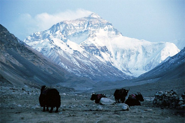 Everest Base Camp - Lhasa to Lhasa